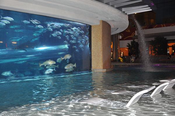 hotel-pool-3
