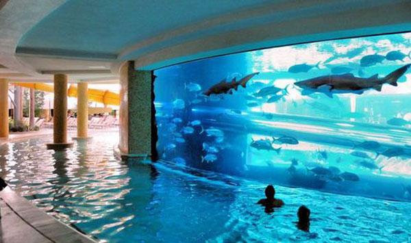 hotel-pool-4