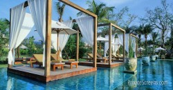 Pool Areas That Feel Like a Tropical Oasis-Clean Yet Luxuriant