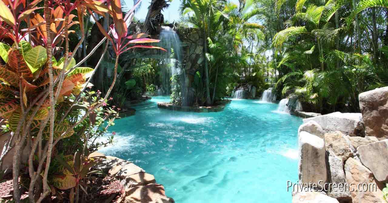 Pool Areas That Feel Like a Tropical Oasis-Lush Rainforest