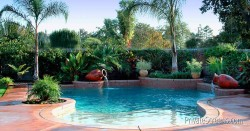 Pool Areas That Feel Like a Tropical Oasis-Cozy And Irregular