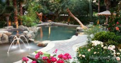 Pool Areas That Feel Like a Tropical Oasis-Fire And Light